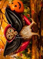 700256_Halloween