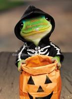 700380_Halloween